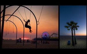 Sunset Swing and Palm.jpg