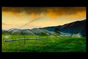 c22-irrigation.jpg